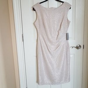 Marina Shimmery Blush with Silver Dress 10